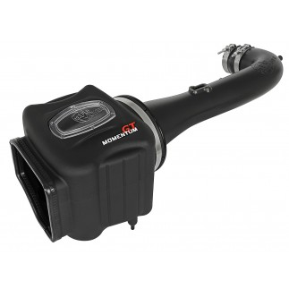Momentum GT Pro DRY S Cold Air Intake System