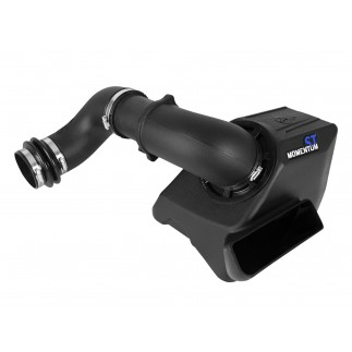 Momentum ST Cold Air Intake System w/Pro DRY S Filter Media